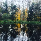 the brilliance of fall's reflections