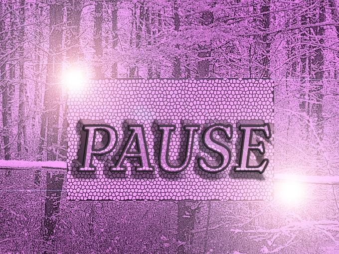 Pause 1495897_10202111756187508_1176833529_o (1)